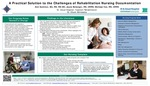 A Practical Solution to the Challenges of Rehabilitation Nursing Documentation