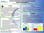 Inpatient Rehabilitation Performance Improvement: Skin Care and Guidelines