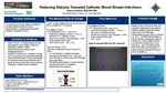 Reducing Dialysis Tunneled Catheter Blood Stream Infections by Sharon Hoffman